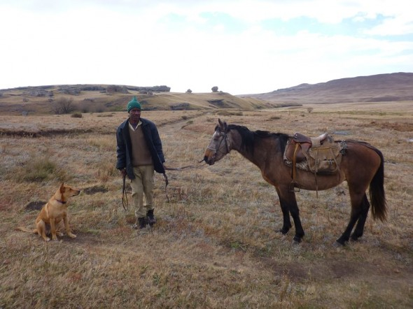 Eyeing up a mountain pony in Lesotho.