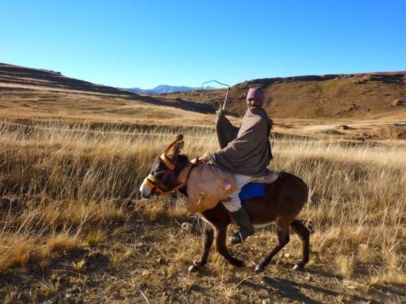 Yee-haaaa! (Lesotho)