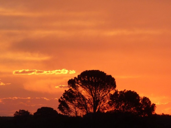 African sunset at the Lake's farm near Port Elizabeth.