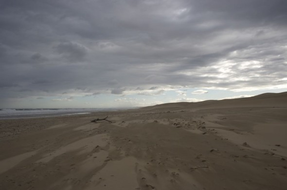Dramatic deserted beach by the dunes.