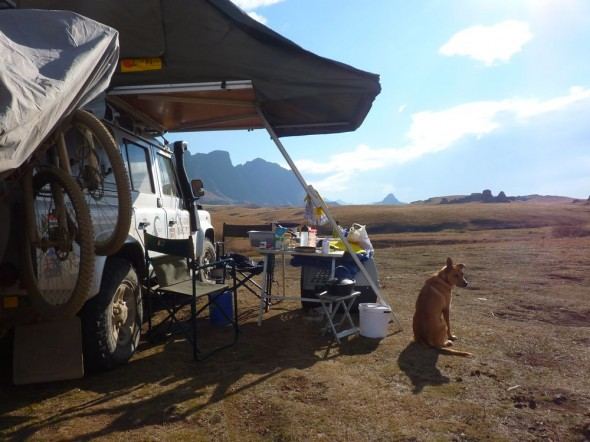 Bow Wow protecting our camp, Lesotho.
