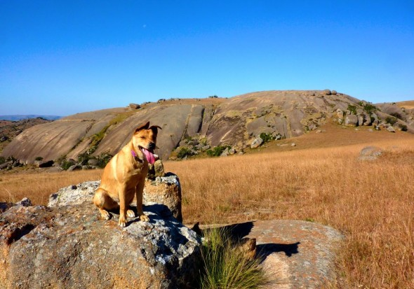 Bow Wow & the colossal Sibibe rock in Mbabane, Swaziland. It is second in size to Australia's Uluru.
