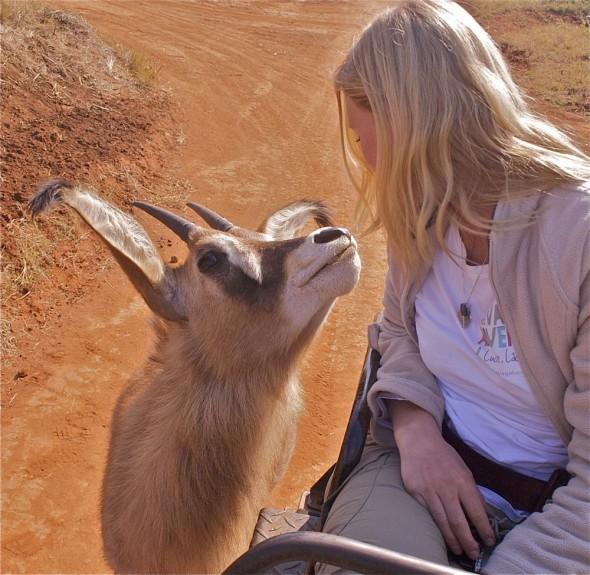 Friends forever. Mlilwane Wildlife Sanctuary, Swaziland.