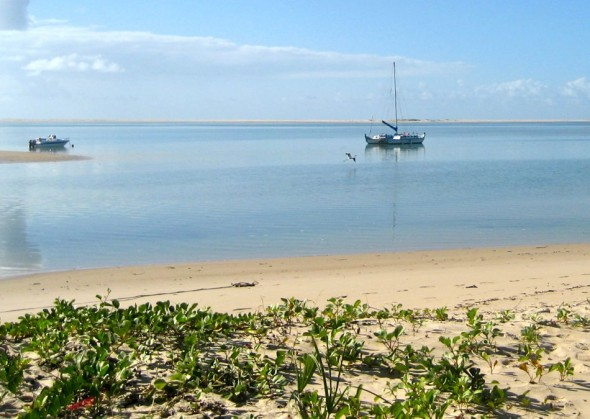 A honking flamingo flies past Pat's catamaran which is called SHE. Pomene, Mozambique.