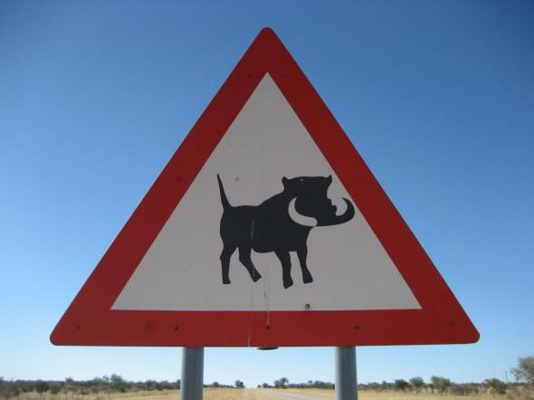 Warthogs warning sign - Damaraland, Namibia.