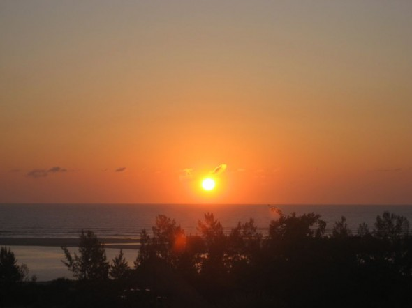 Listening to the breeze soughing through the brachystegia trees at sun rise. Pomene, Mozambique.