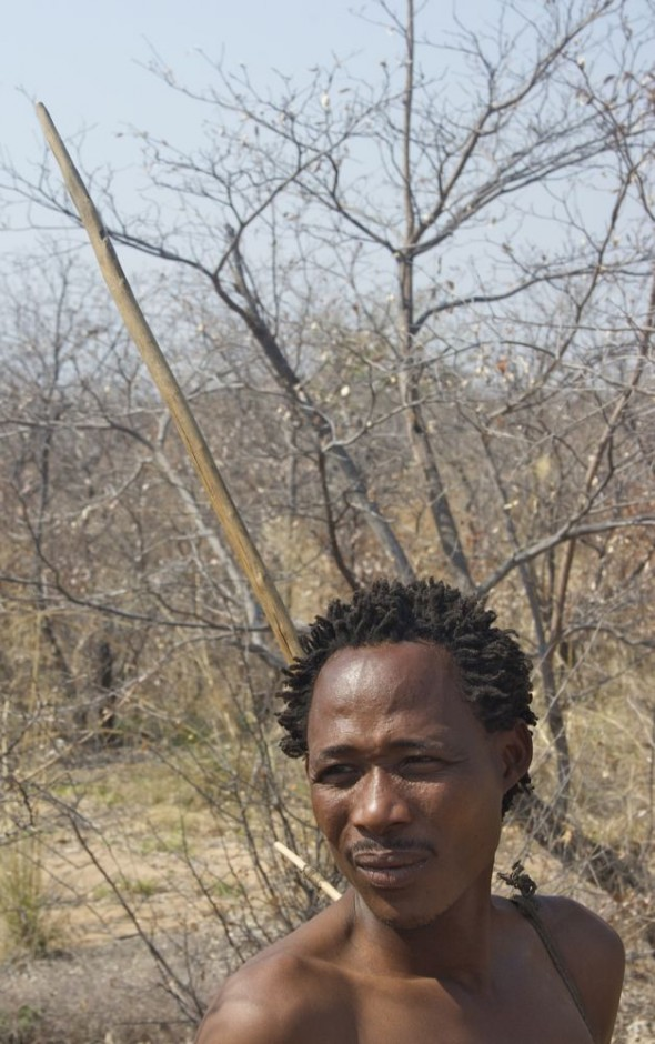 Bushman with bow ready for hunt. Ju/'hanse San people, or as they are more commonly known, the Bushmen, near Tsumkwe, eastern Namibia.