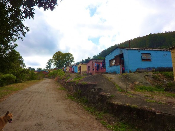 Bow Wow leads the way. Housing in Bulembu, Swaziland.