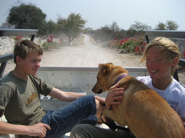 Bow Wow and Lucie in the back of a ute driving down dusty road. Grootfontein, Namibia.