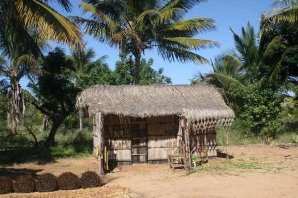 Fisherman's home. Pomene, Mozambique.