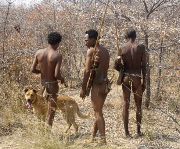 Bushmen with Bow Wow on a hunt. Ju/'hanse San people, or as they are more commonly known, the Bushmen, near Tsumkwe, eastern Namibia.