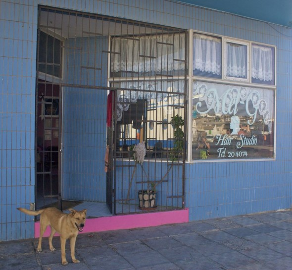 Bow Wow out the front of Mel G's Hair Studio, Lüderitz, Namibia.