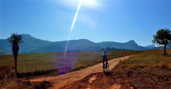 Lachlan cycling towards a herd of wildebeest and the sun. Mlilwane Wildlife Sanctuary, Swaziland.