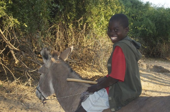 A local boy on his donkey, Epupa Falls, Namibia.