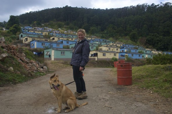 So glad to be together again. Bow Wow & Lucie in Bulembu, Swaziland.