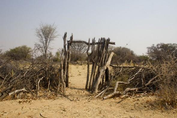 A Himba pen for keeping livestock, Kaokoland, Namibia.