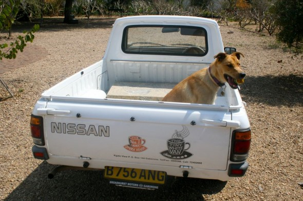Bow Wow posing for a photo on the back of the Little White Van at The No. 1 Ladies' Opera House, Gaborone, Botswana.
