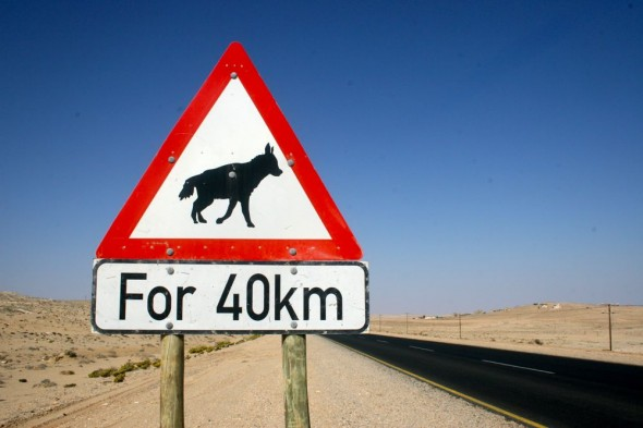 Brown Hyena safety sign on Nambian highway, Lüderitz, Namibia.