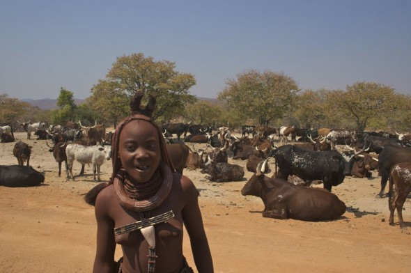 Himba girl with her herd of cows on the way to Epupa Falls, Kaokoland, Nambia.