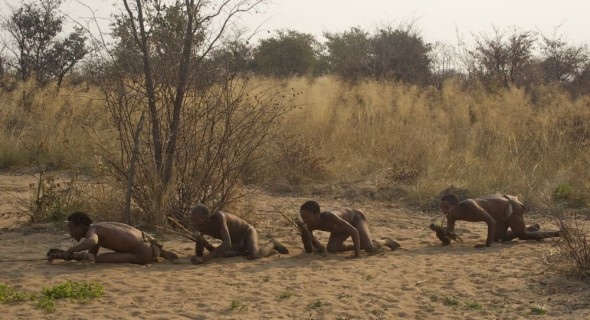 Bushmen creaping up on their prey in a hunt. Ju/'hanse San people, or as they are more commonly known, the Bushmen, near Tsumkwe, eastern Namibia.