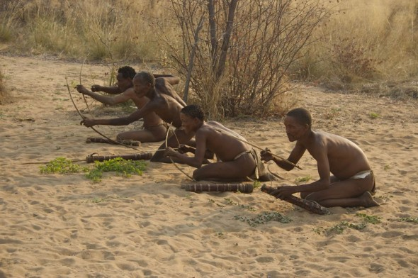 Bushmen shooting arrows at their prey on a hunt. Ju/'hanse San people, or as they are more commonly known, the Bushmen, near Tsumkwe, eastern Namibia.