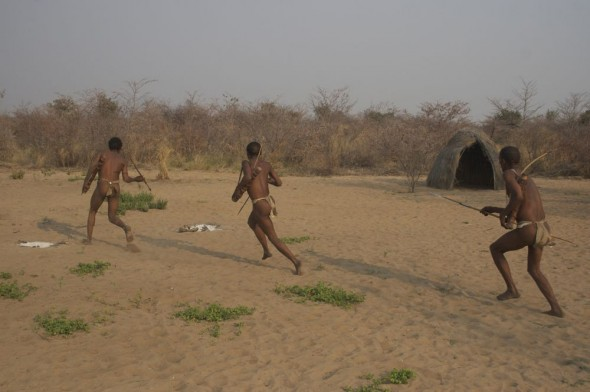 Bushmen hunting using spears. Ju/'hanse San people, or as they are more commonly known, the Bushmen, near Tsumkwe, eastern Namibia.
