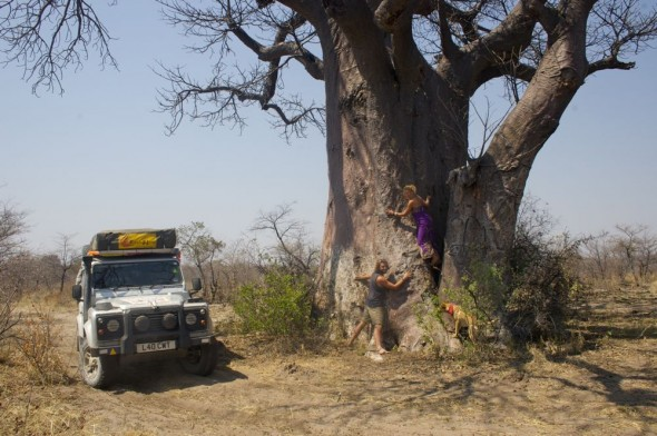 Lucie, Lachlan & Bow Wow from The Vagabond Adventures hugging a giant baobab tree with Lula the Landy. Near the Ju/'hanse San people, or as they are more commonly known, the Bushmen, near Tsumkwe, eastern Namibia.