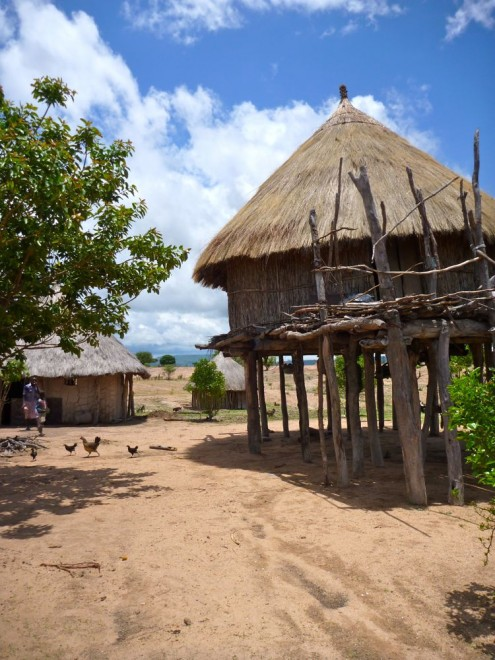 Tonga villiage with mud huts on stilts and chickens, near Binga, Zimbabwe