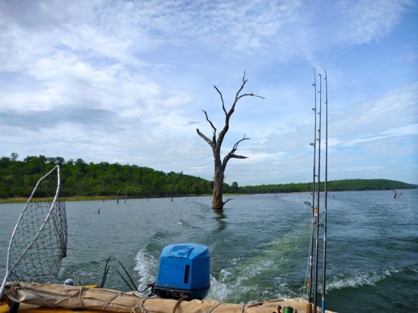 View from boat on Lake Kariba, Zimbabwe