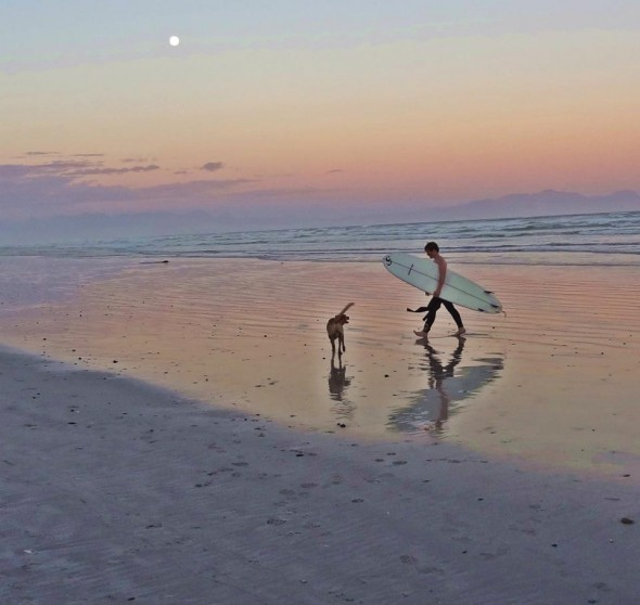 Boy and dog, Bow Wow, in pink sunset with surf board at Muizenburg beach, Cape Town.