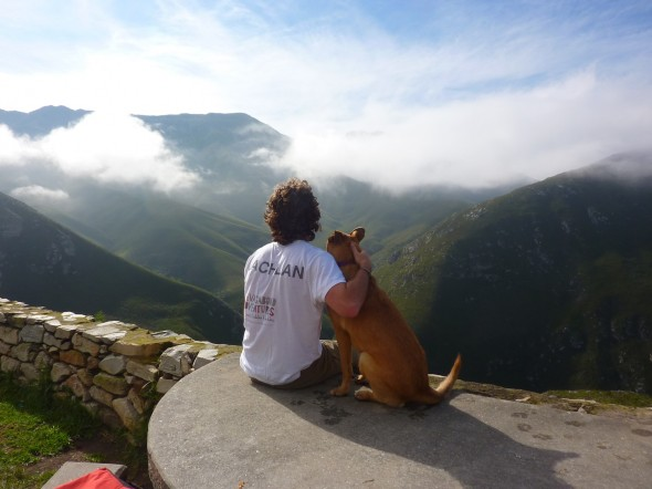 Bow Wow admiring the view with Lachlan at the Outeniqua Pass.