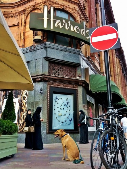 Bow Wow out front of Harrods in London on same day as Julian Assange gave speach outside of ecuadorian embassy