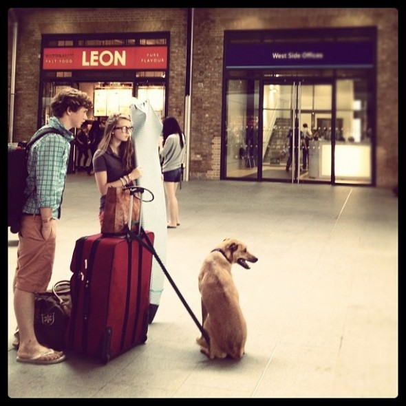 Bow Wow with Hamish and Jemma at Kings Cross Station in London